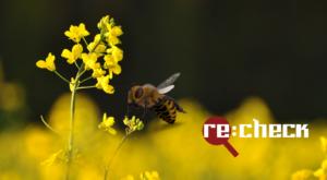 Bites, rapsis un pesticīdi – kas taisnība un kas ne?